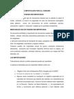 PAUL-ROCIO EL DESPACHO DE IMPORTACIÓN PARA EL CONSUMO