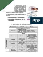 Clasificación de los Neurotransmisores