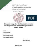 Tesi Bioingegneria Sviluppo Di Un Algoritmo Di Trattografia Deterministica Dti