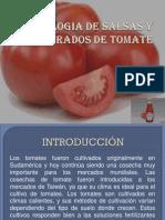 salsa de to.pdf