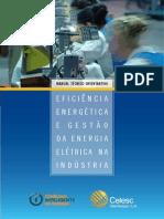 Manual - Eficiência Energética e Gestão da Energia Elétrica na Industria