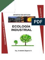 Apuntes Ecologia Industrial Para Convertir a PDF