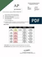 Informe Final Toxico