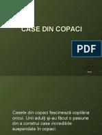 Case Din Copaci