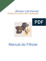 Labrador Filhote