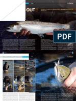 Saltwater fly fishing In Ireland