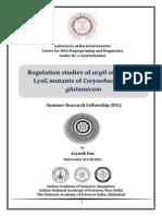 Regulation studies of argO of E.coli by LysG mutants of Corynebacterium glutamicum