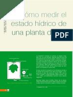 Cómo medir el estado hidrico de una planta de vid