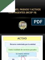 NICSP 19
