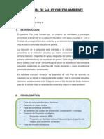 Plan Anual de Salud y Medio Ambiente 2013