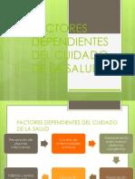 FACTORES DEPENDIENTES DEL CUIDADO DE LA SALUD.pptx