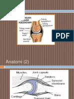 Osteoarthritis - Rsmm