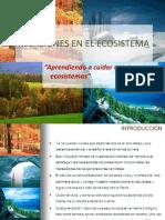 Ecologia Relaciones en El Ecosistema