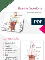 Apresentação Sistema Digestório - Aula Principal