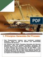 Principios Generales Del Derecho Procesal en General