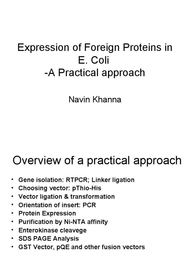 pcr 1 a practical approach a practical approach practical approach series