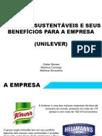 Unilever e a Sustentabilidade