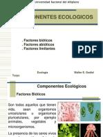Componentes Ecologicos.ppt