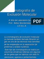 Cromatografía de Exclusión Molecular