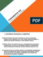 FUNDAMENTOS TGS_Cassificação dos sistemas.pptx