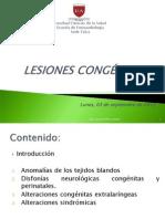 9._04_09_Lesiones_Congenitas