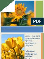 Kaantasanngpang Uri 121118032543 Phpapp02