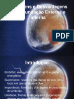 Vantagens e Desvantagens Embrio