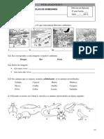 Ficha Diagnóstico 2012-2013 - 5ºano CN