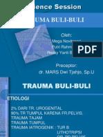 CSS Trauma Buli