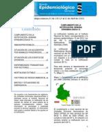 2013 Boletin Epidemiologico Semana 15 (1)