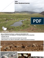 Camelidos Sudamericanos - Wheeler Sem Int an AP