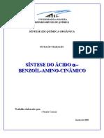 PRÉ RELATÓRIO - SÍNTESE DO ÁCIDO ALFA-BENZOÍL-AMINO-CINÂMICO