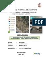 Pip Gar Ayacucho 2012 Cc