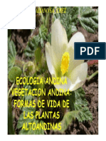 Altoandina Ecologia Andina