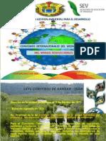 Convenios Intermnacionales Del Medio Ambiente