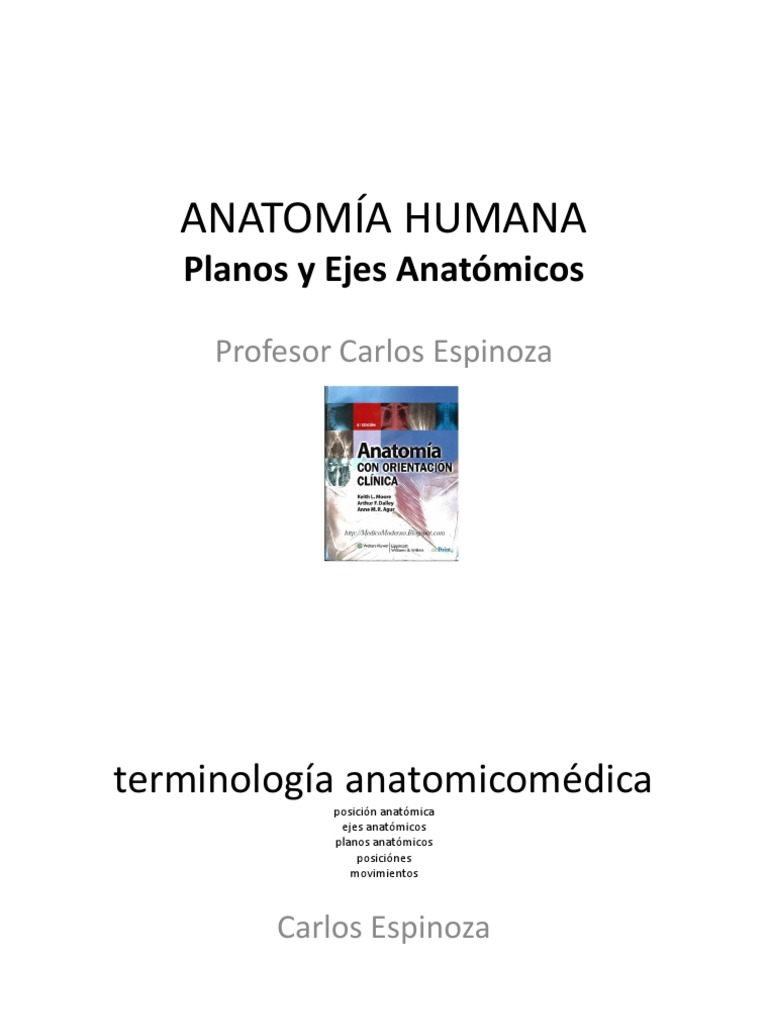 Anatomia GENERALIDADES Planos y Ejes