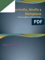 Hipertrofia, Atrofia y Metaplasia