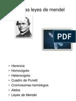 4-Genetica mendeliana.pdf