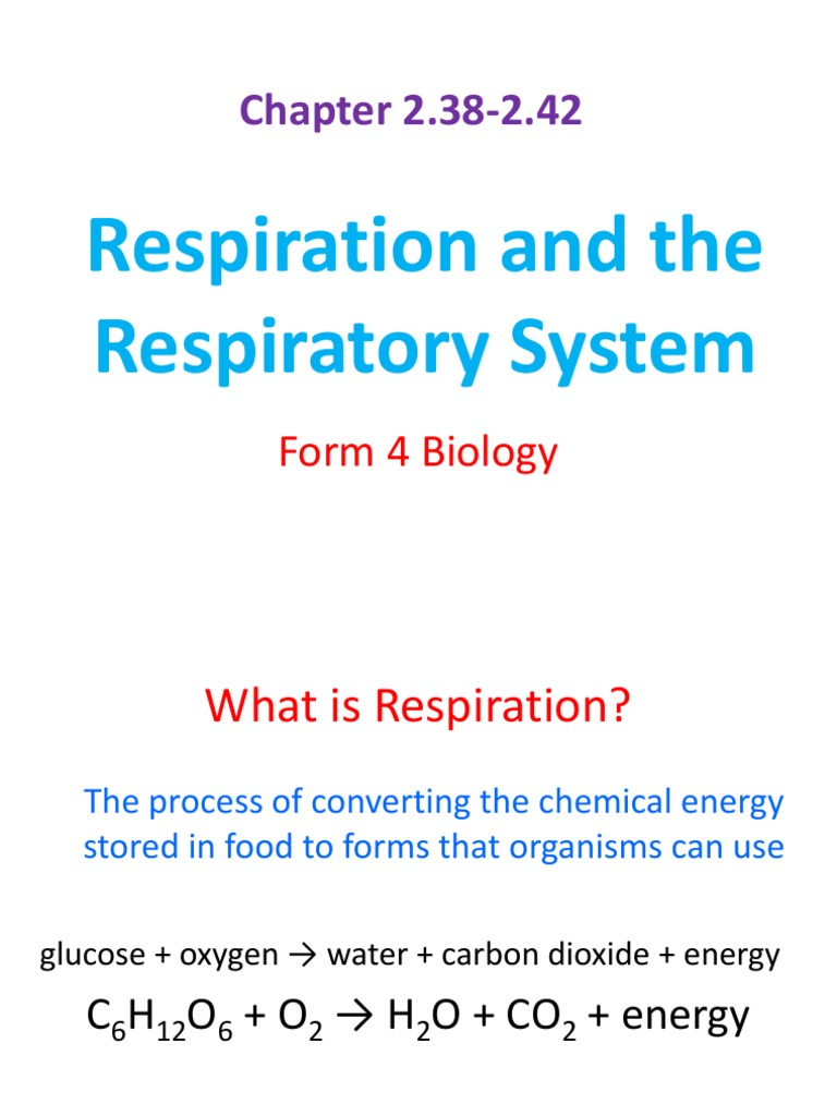 2.38-2.42 Respiration and Respiratory System | Cellular ...