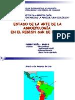 Estado Del Arte Brasil Sur