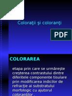 Coloratii-1 lp3