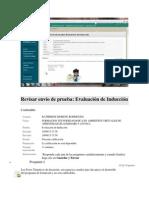 Revisar envío de prueba.pdf