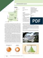 Gran Atlas de Misiones - Cap 7 (Iguazú)