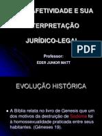 10. Slide Uniao Homoafetiva