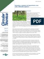 Gliricídia artigo