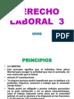 Principios Del Derecho Laboralderecho Laboral 3