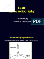 Basic Echocardiography,Mantap