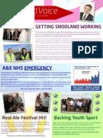 Snodland Labour Leaflet Autumn 2013