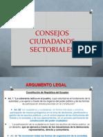 Consejos Ciudadanos Sectoriales