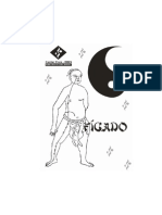 figado.pdf